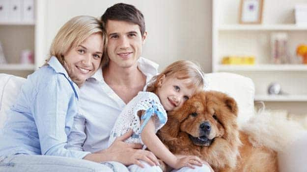 Wills & Trusts dog-young-family Direct Wills Kirkstall